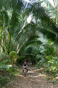Bicyklovnie na Dos Lagunas, Petenská džungľa, Guatemala